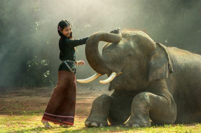 Девушка со слоном